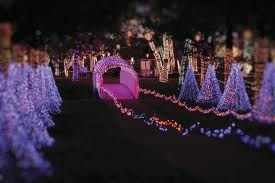 Rhema Christmas Light Tour