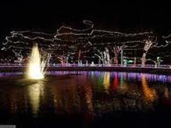 Information For:  Paragon Christmas Light Tour
