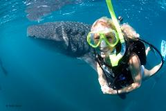 PADI Open Water Dive Course - Learn to Dive