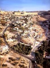 City of David Tour