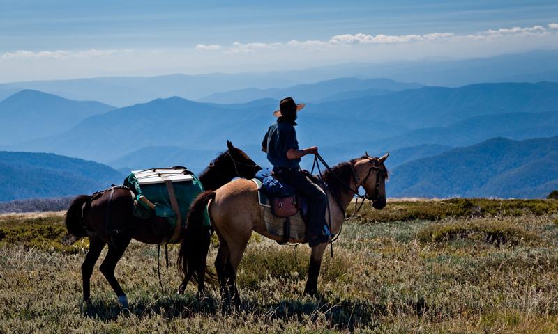Natural Horsemanship Clinic & Pack Horse Adventure (4 Day)