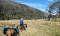 New Years Eve Pack Horse Adventure: 8-day tour
