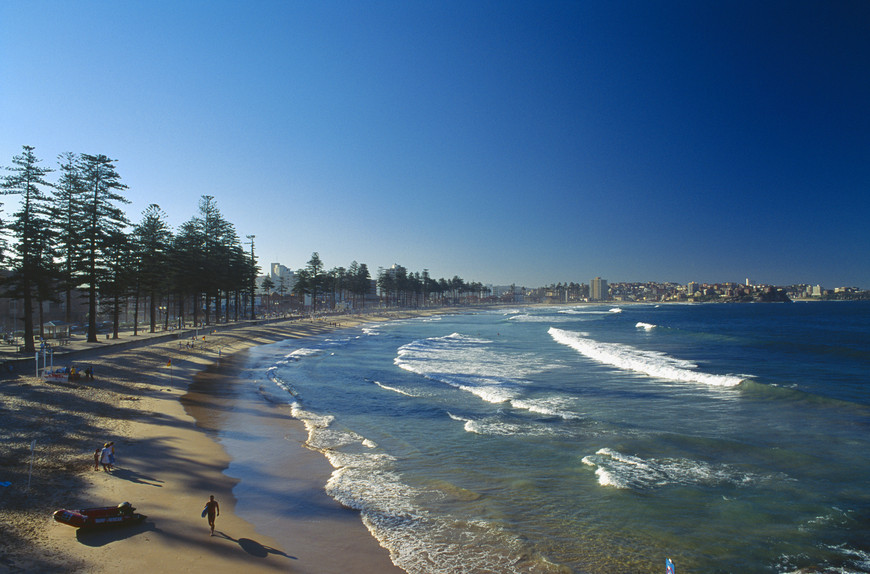 Sydney Half Day Sight Seeing with Manly Beach (Morning)