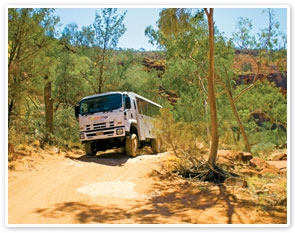 Palm Valley and 4WD Safari