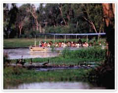 Kakadu National Park Day Tour