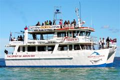 Jervis Bay Day Tour with Grand Pacific Drive, Kiama Blowhole and Dolphin Watch Cruise