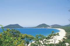 Port Stephens Day Tour with Dolphin & Whale Watch