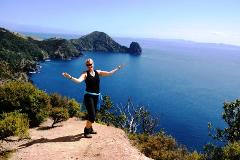 4 day Coromandel Explorer Walk - Lodge Based