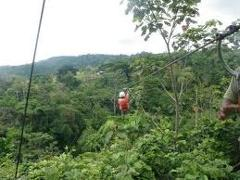 Jungle Canopy & Zipline Tour