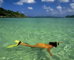 Cahuita Snorkeling & Hiking Tour