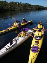 2 Day Noosa Everglades Guided Kayak Tour