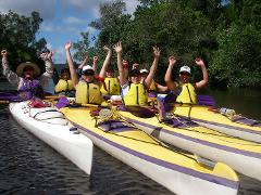1/2 Day Noosa Everglades Guided Kayak Tour