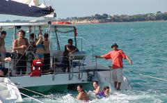Seeking Wildlife Daytime Eco Sailing, BBQ Meal with Fruit in season Plate and bottled wine, mid strength beer