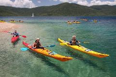 Half Day Sea Kayaking Tour