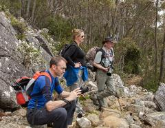 Private Photography Tuition - Wellington Wanders 'Chalet to Organ Pipes' Photography Walkabout - 3 hours