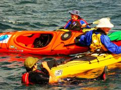 Sydney Harbour Kayaks ALL DAY Sea Kayaking Course