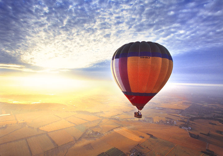 Yarra Valley Food, Wine & Balloon Daytour