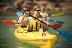 The Freycinet Paddle