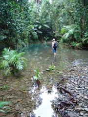 3 Day Cape Tribulation - Cooktown Wanderer and Rainbow Serpent Rock Art Tour - 3* Moderate
