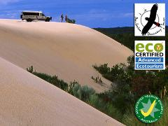 Beach & Forest Eco Adventure