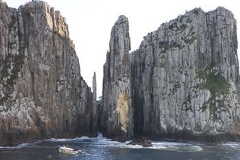 Tasman Island Cruises 3 Hour Cruise – Morning Tasmania Australia
