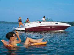 26' Sea Ray Bowrider for Columbus Day with Captain (Half Day)
