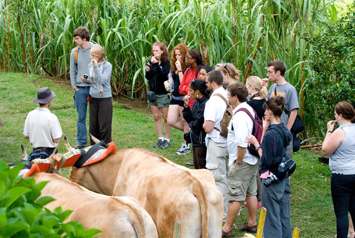 El Trapiche Tour - authentic Costa Rican family farm with  Coffee Chocolate and Sugar cane Tour