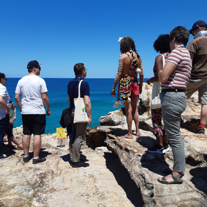 Guided Land Based Whale & Cultural Walk
