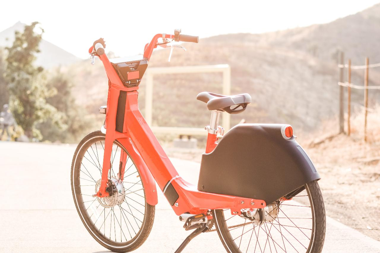 Vineyard Bike Tour