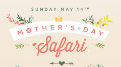 Mother's Day Safari