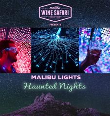 Malibu Lights: Deluxe Tour