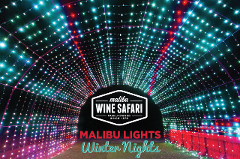 Malibu Lights: Winter Nights
