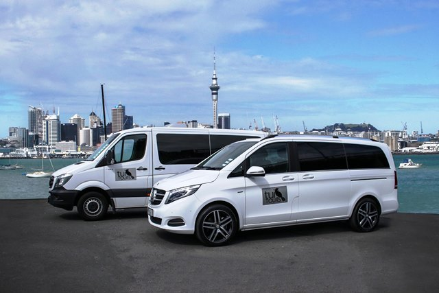 Auckland City and Devonport Tour (small group cruise excursion tours)