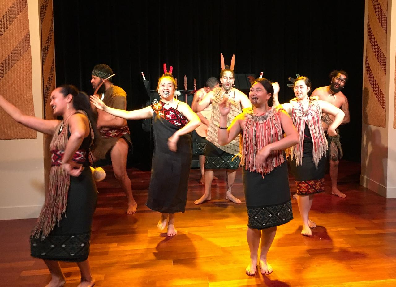 Auckland City and Maori Culture Tour (private vehicle and guide)