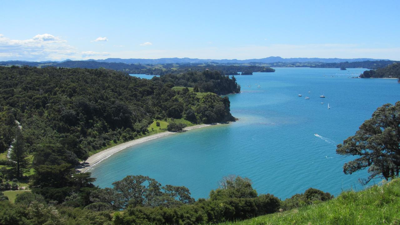 Matakana Coast and NZ Country Tour