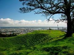 Best of Auckland City City Tour