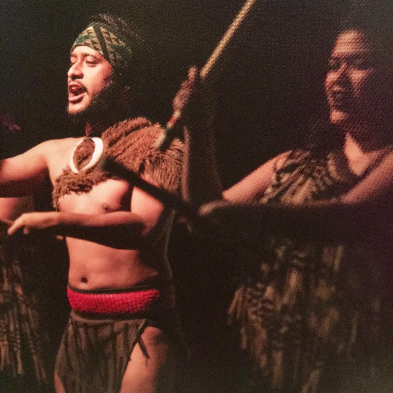 Auckland City and Maori Culture Tour