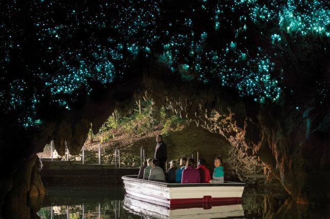 Waitomo Caves and Hobbiton Combo