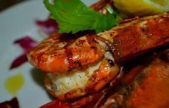 Table Reservation @ El Bistro