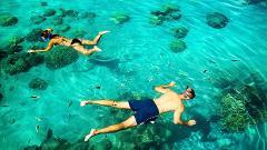Wai'anae Snorkel Tour