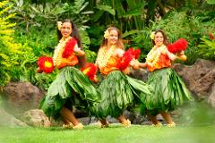 Pearl Harbor, Dole Plantation and Polynesian Cultural Center from Oahu