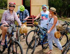 Adult Mountain Bike Hire