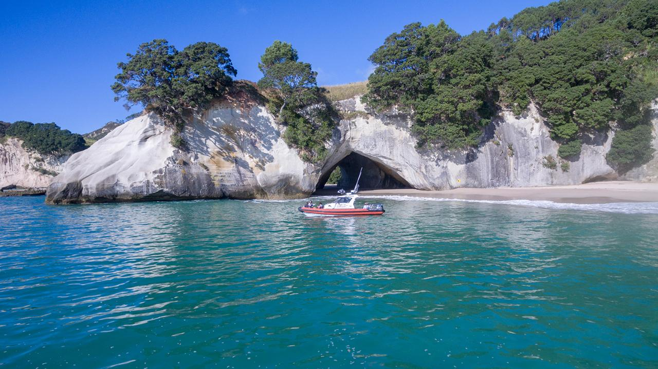 Coves Caves and Coastline