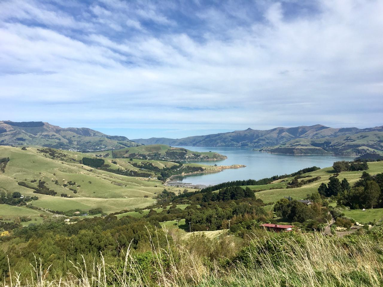 Akaroa - The Bays - Christchurch - Akaroa Day Tour with Black Cat Cruise and optional Shamarra Alpacas Farm Tour and The Giants House