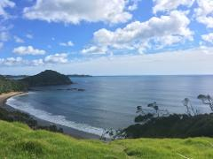Sandy Bay to Whananaki