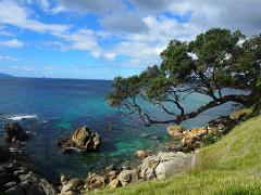 Waipu Cove to Langs Beach