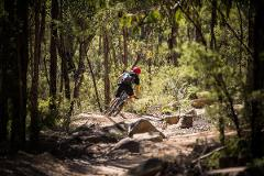 Old Mans Valley (OMV), Hornsby Bike Park