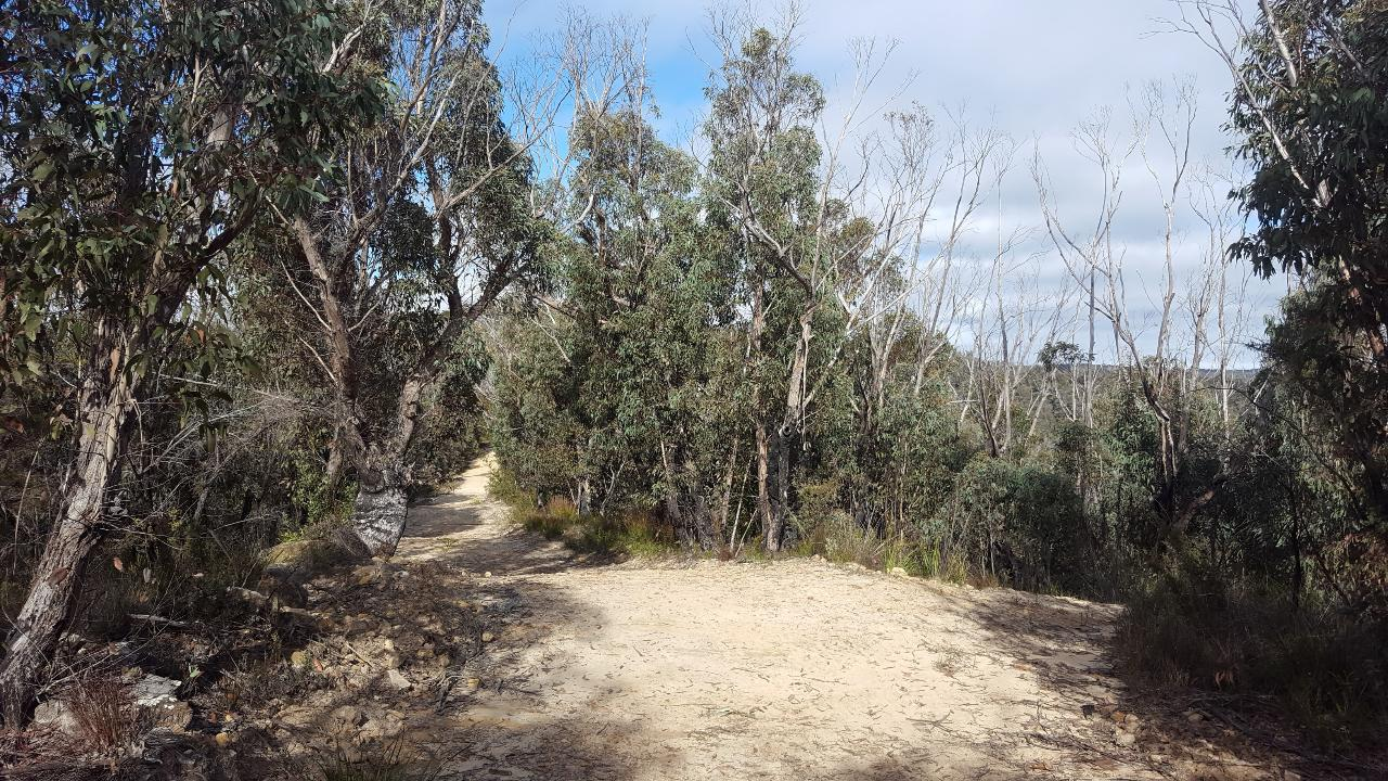 DO NOT BOOK - Private Group - Hanging Rock Trail (self-guided) - Blackheath