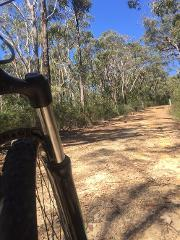Blue Mountains - Katoomba - 3 Day Bike Hire