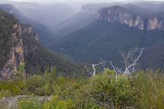 ANVIL ROCK TRAIL - Katoomba  - 5 Hour Bike Hire (BEGINNER FRIENDLY)